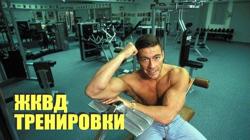 Тренировка Ван Дамма ЖКВД Каратэ