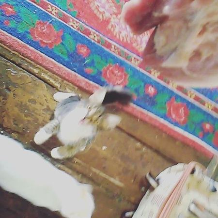 Sar_ira64 video