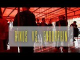 TEENAGE ARENA RINUS VS. ENDORPHIN - TEASER