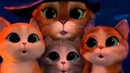 Кот из Шрека, кот в сапогах, Шрек 4