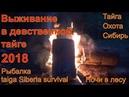 Выживание в девственной тайге 2018 Рыбалка Охота Лес Поход Сибирь Медведь, Тайга, Хариус, Таймень