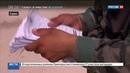 Новости на Россия 24 • Москва призывает расширить гуманитарную помощь в зонах деэскалации в Сирии