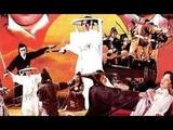 Дракон из Шаолиня (боевые искусства, кунг-фу 1974 год)
