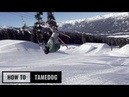 How To Tamedog On Skis