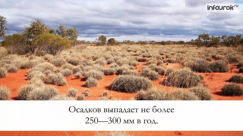 Компоненты природы Австралии - География 7 класс 29 - Инфоурок