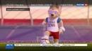 Новости на Россия 24 • Талисманом ЧМ по футболу-2018 стал волк Забивака