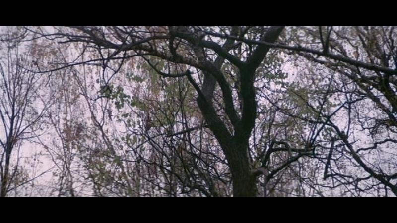 Фильм Чучело (1983). 2 серия