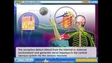 8. Receptors And Effectors