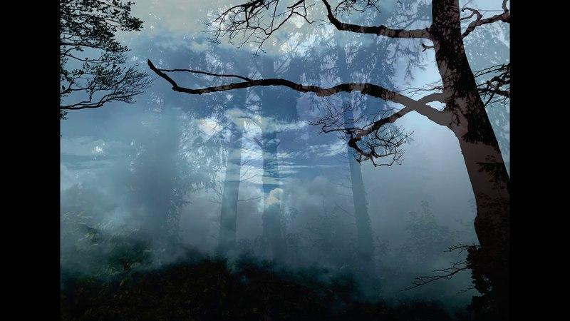 Vinterriket Book Restzwielicht Impressionen eines Wanderers VI preview