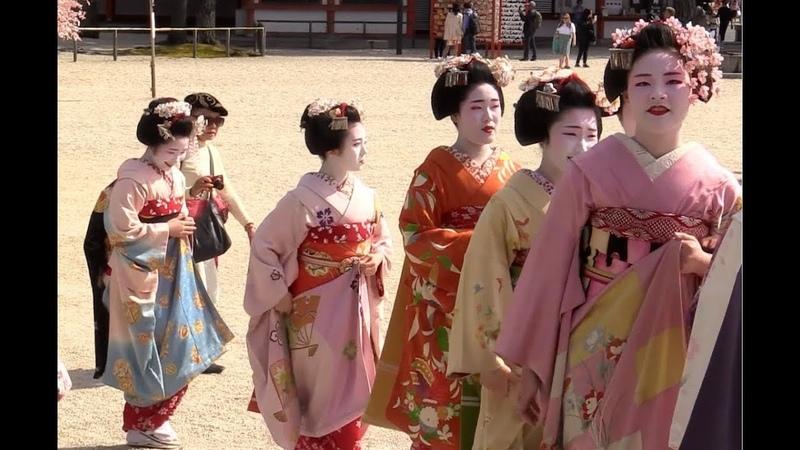 平安神宮で舞妓さんの奉納演舞 2019.4.16 Geisha/Kyoto,Japan 例祭翌日祭