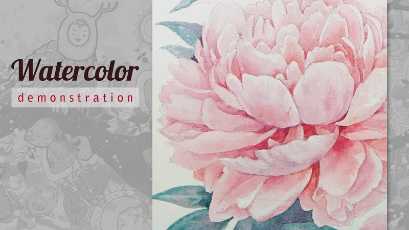 Peony Watercolor. Speed Painting