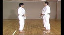 Karate Kihon Ippon Kumite 11 16
