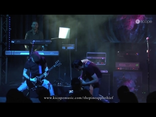 The Pineapple Thief - Build a World (live from the Boerderij)