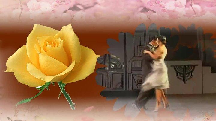 Маленький цветок. Танго.Романтический саксофон.Fausto Papetti
