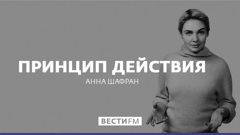 Украина бегает по граблям * Принцип действия с Анной Шафран (07.03.17)