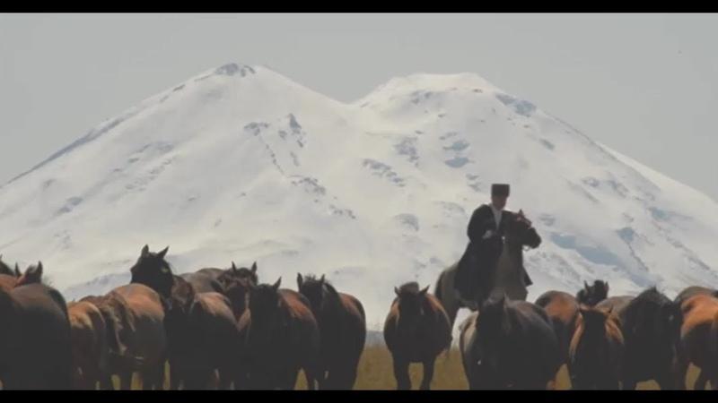 «Шагди.Опережающий полёт стрелы»... фильм Аскарбия Нагаплева... 2018г... кабардинская порода лошадей