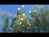 Выпускное видео 11 «В» (Баста - Сансара)