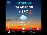 погода 24 апреля