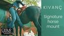 Kivanc Tatlitug ❖ Mounting a horse with no stirrup ❖ Cesur ve Guzel