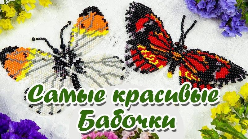 Бабочка из бисера. Мастер класс и Схема плетения