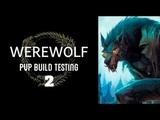Werewolf PVP Build