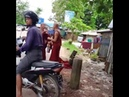 ¿Pelea entre monjes budistas Crédito del video Newsflare