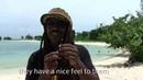Djarum black clove cigarettes review from jamaica