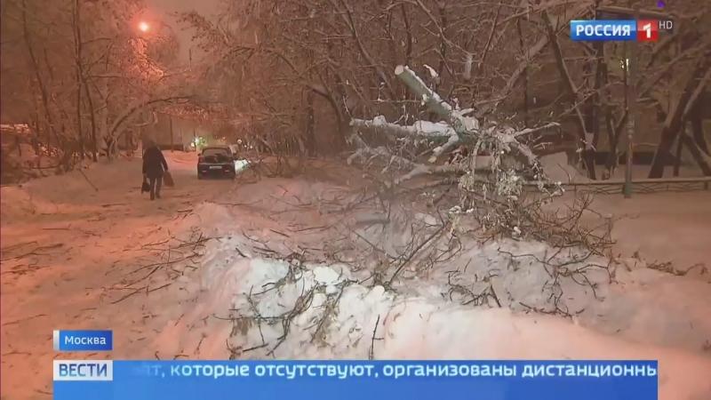 Вести-Москва • Москва откапывается из-под снега: выпало 125% месячной нормы осадков
