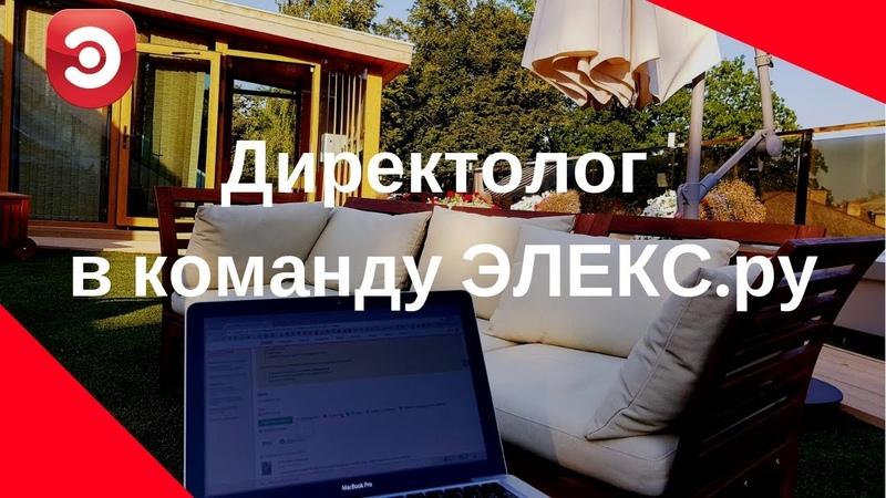 Директолог в команду ЭЛЕКС.ру