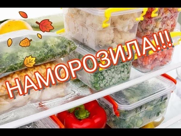 Заморозка овощей, ягод и зелени Что в моей морозилке