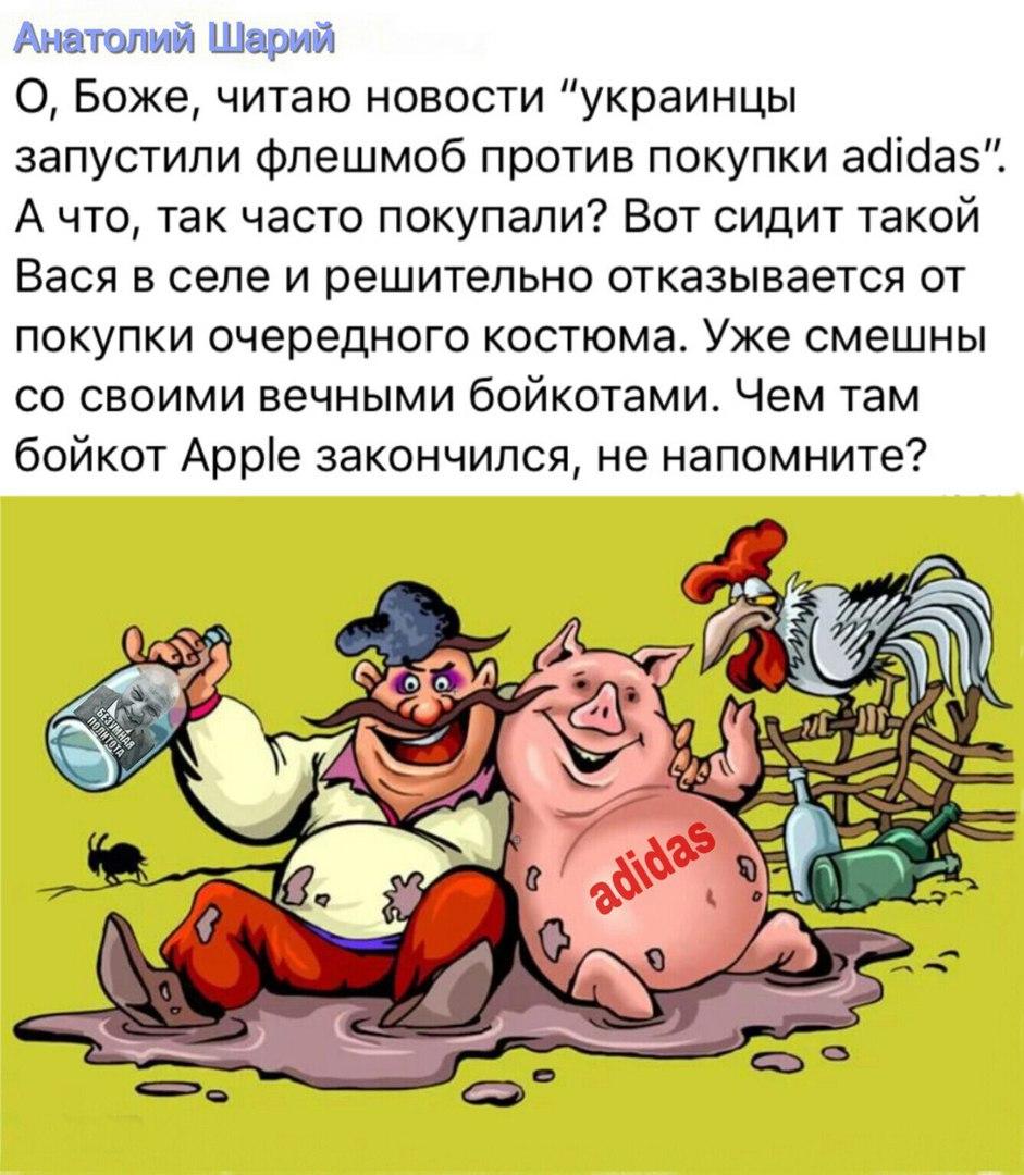 https://pp.userapi.com/c844721/v844721304/4b729/Fbr2OboGc1k.jpg