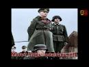 Fieldm. Rommel