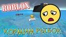РОБЛОКС ВЫЖИВАНИЕ Кормим рыбок в Roblox Top Games TV