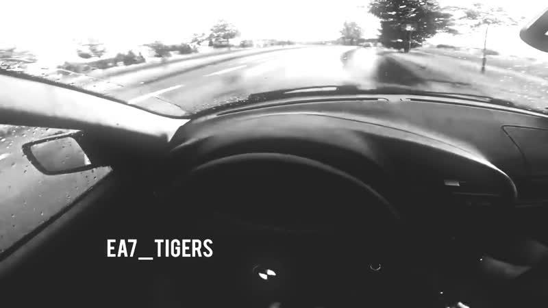 Дрифт   ea7_tigers   TOP WINE
