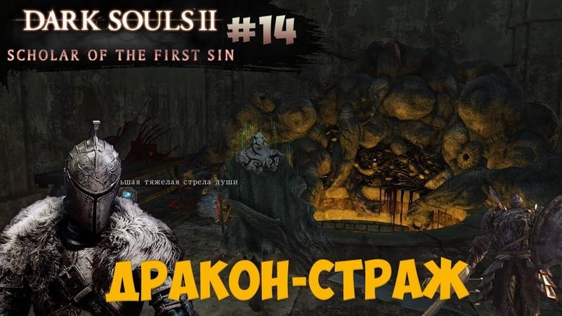 Безумный маг Навлаан и Цитадель Алдии (Dark Souls 2: SotFS) [14]
