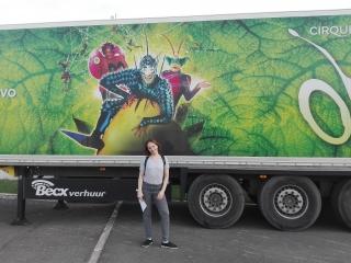 Шоу OVO Cirque du Soleil впечатление