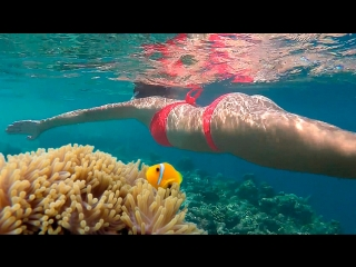 Amazing Maldives