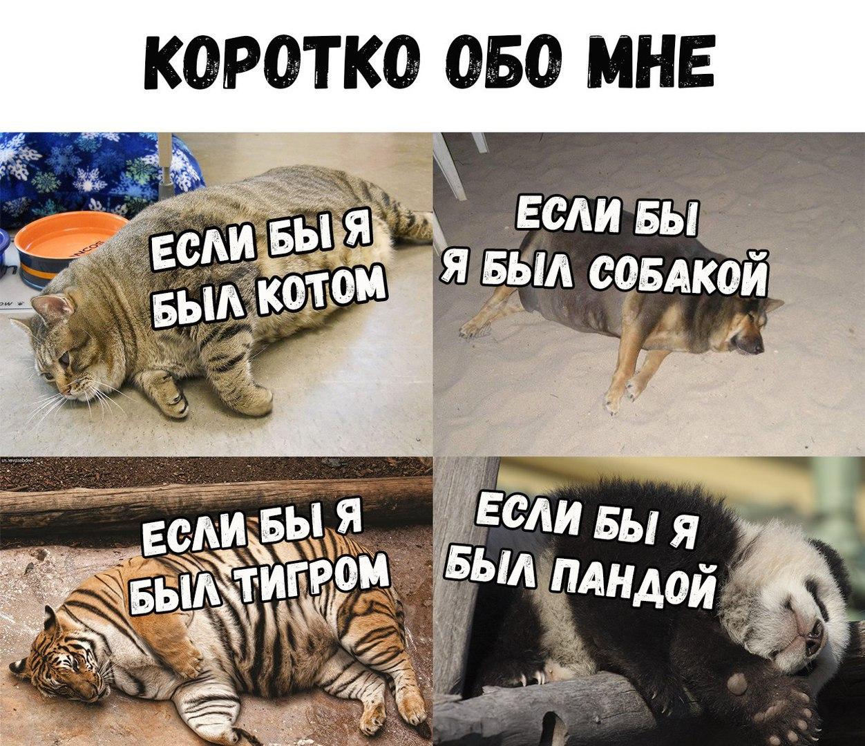 O5VsklGDysQ.jpg