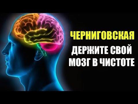 Татьяна Черниговская Держите мозг в чистоте! видео лекция