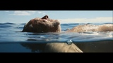 Volvo Human-Made Stories 'Nemo's Garden'