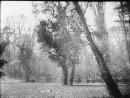 Андалузский пес 1929