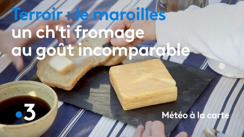 Le maroilles, un ch'ti fromage au goût incomparable - Météo à la carte