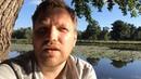 Отзыв о от Алексея Третьякова