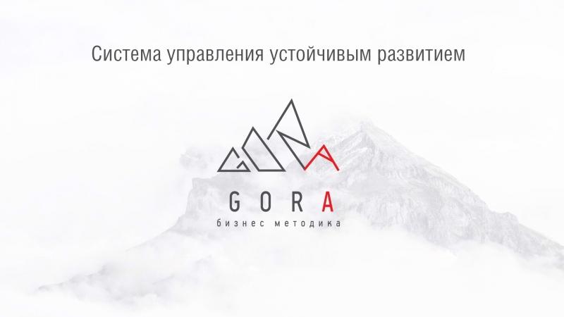 Отзыв о тренинге по бизнес-методике GORA | Сергей Сергеевич Власов
