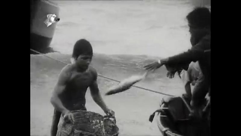 Der DEFA Augenzeuge 25.1.1980 - Boney M in Warschau, Peru, Vietnam, Killing Fields