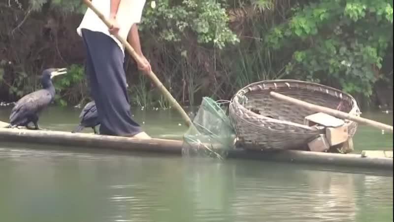 Хитрая рыбалка