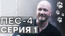 Сериал ПЕС - 4 сезон - 1 серия - ВСЕ СЕРИИ смотреть онлайн СЕРИАЛЫ ICTV