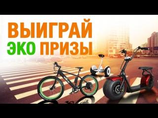 Eco_video_new