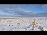 ..видео Ben Dolphin..Снег перестал падать и Солнце вышло сегодня утром.....и skylarks..))))..