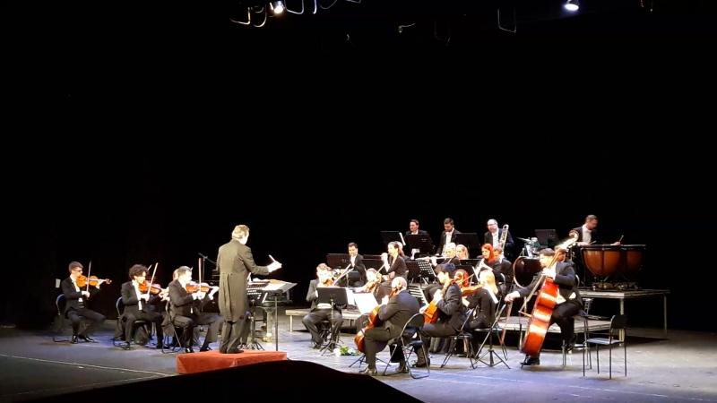 Les Contes de la Foret de la Vienne - Concert de l'orchestre symphonique de la Vienne